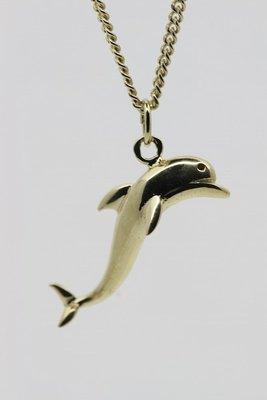 Gouden Dolfijn ketting hanger - 2