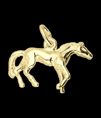 Gouden Paard prairie ketting hanger