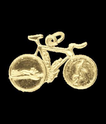 Gouden Triathlon fiets vlak ketting hanger