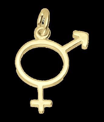 Gouden Man-Vrouw teken ketting hanger